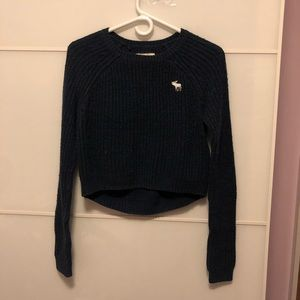 Abercrombi & Fitch Cropped Sweater